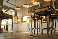 Toy robot leashed to table leg in a coffee shop - GUSF01024