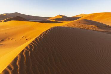 Africa, Namibia, Namib desert, Naukluft National Park, Dead Vlei and sand dune 'Big Daddy' - FOF10110