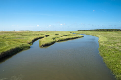 Germany, Schleswig-Holstein, Sankt Peter-Ording, salt marsh at high tide - UMF00853