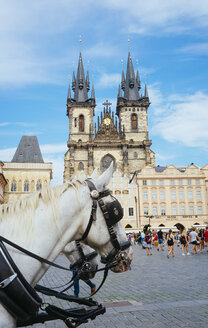 Czechia, Prague, horse carriage fat the Old Town Square with Church of Our Lady in the background - GEMF02326