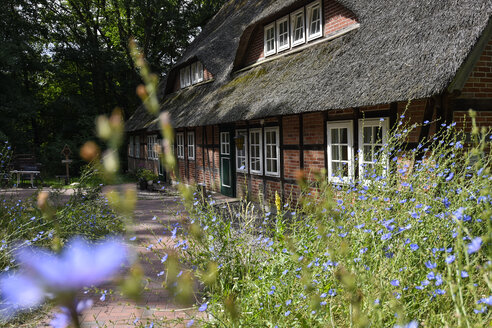 Germany, Lueneburger Heide, traditional half-timbered house - FDF00234