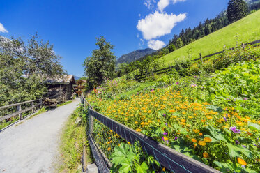 Austria, Salzburg State, hiking trail between Bad Hofgastein and Bad Gastein - THAF02251