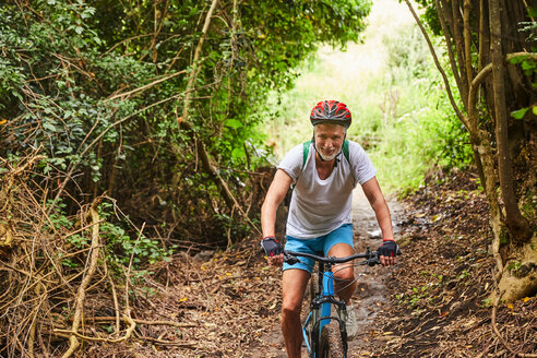 Mature man mountain biking on trail in woods - CAIF21369