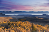 Yellow autumn aspens and Mono Lake and the sunrise in California - AURF01542