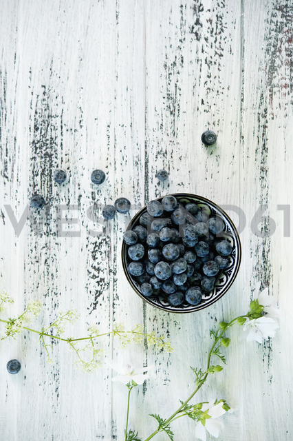 Bowl of blueberries - ASF06210
