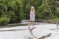 Girl standing on dead wood at the riverside - TCF05774