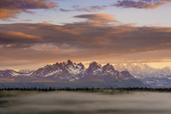 A thin layer of fog blanketed over evergreens with mountains in the background at sunset.   Denali National Park, Alaska, USA. - AURF02083