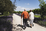Senior couple walking in park, woman using wheeled walker - UUF14947