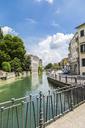 Italy, Veneto, Treviso, Sile river - JUNF01138