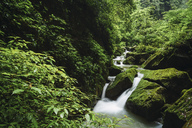 China, Sichuan Province, Wulong Karst National Geology Park - KKAF01479