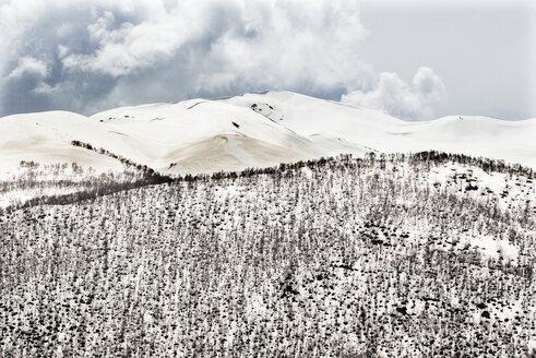 Georgia, Ushguli,  Greater Caucasus covered in snow - WWF04345