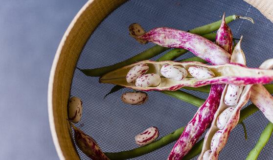Various beans - RAMAF00004