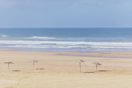 Morocco, empty beach, straw umbrellas - MMAF00525