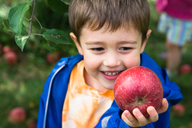 Little boy holds an apple up in front of his face and smiles - AURF02463
