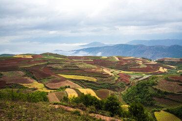 China, Yunnan province, Dongchuan, Red Land - KKAF01538
