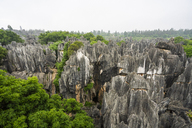 China, Shilin, Stone forest - KKAF01544