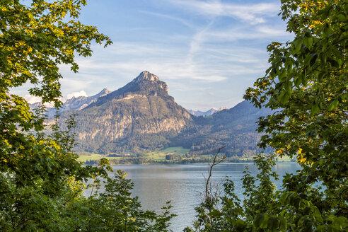 Austria, Salzburg State, Salzkammergut, St. Wolfgang at Lake Wolfgangsee - JUNF01156