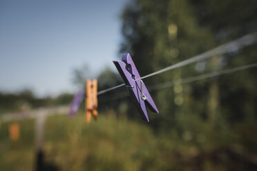 Clothes pegs hanging on washing line - KMKF00442