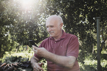 Portrait of content senior man looking at cell phone in the garden - KMKF00491