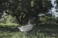 Little girl relaxing in bath tub in garden - KMKF00497