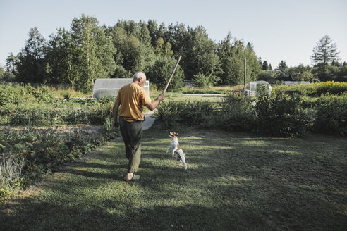 Senior man playing with dog in garden - KMKF00512