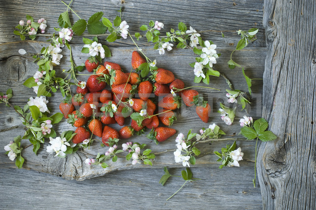 Apple blossom twigs and strawberries on wood - ASF06229