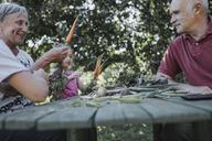 Senior couple at garden table with granddaughter harvesting carrots - KMKF00527