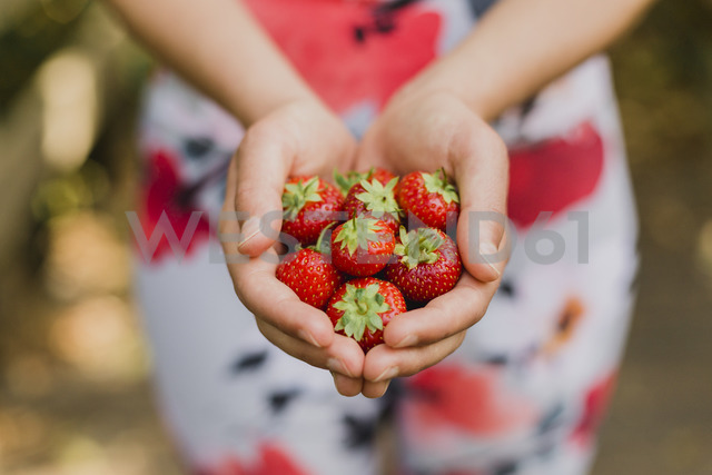 Young woman holding handful of strawberries - NMSF00238 - Nicole Matthews/Westend61