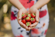 Young woman holding handful of strawberries - NMSF00238