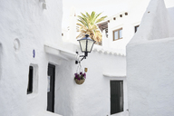 Spain, Menorca, Binibequer - IGGF00599