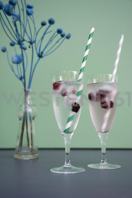 Ice cubes with blackberries in champagne glasses, dried flowers in vase - GISF00384