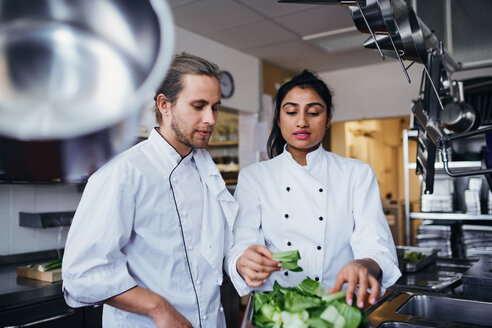 Female chef discussing with colleague over vegetable at commercial kitchen - MASF08689