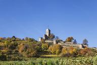Germany,Rhineland-Palatinate, Pfalz, Wachenheim, Castle, autumn colours, German Wine Route - GWF05666
