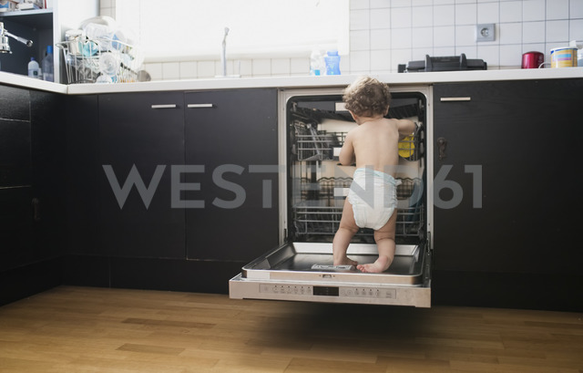 Back view of baby boy wearing diaper exploring dishwasher in the kitchen - AZOF00013