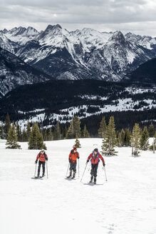 A group of backcountry skiers in the San Juan National Forest, Silverton, Colorado. - AURF04492