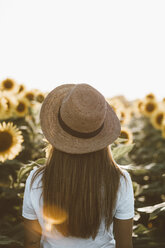Back view of young woman standing in a field of sunflowers - OCAF00355