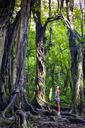Fitness woman under old tree - AURF05019