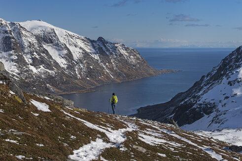 Female hiker descending rocky ridge towards Skjelfjord from Volandstind, Flakstad├©y, Lofoten Islands, Norway - AURF05052