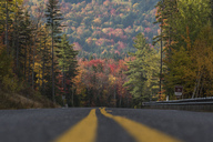 Fall foliage along the Kancamagus Highway in New Hampshire - AURF05082
