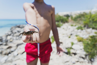 Close-up of boy holding a crab on the beach - AZOF00047