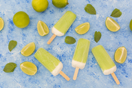 Lime mint popsicles, limes and mint leaves on light blue background - JUNF01259