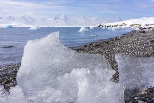 Ice melting on a rocky beach, Svalbard - AURF05486