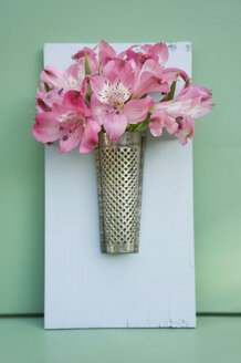 Old nutmeg grater used as flower vase - GISF00391