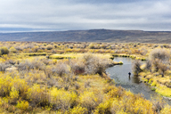 Distant View Of A Fly Fishing On The Hams Fork In Wyoming - AURF06260