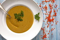 Dish of red lentil soup - JTF01087