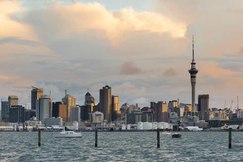 New Zealand, North Island, Auckland, Auckland skyline in the evening - MKFF00389