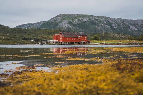 Northern Norway, Lapland, Red wood house at a fjord - KKAF02059