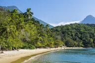 Tropical beach with palm trees in Ilha Grande, Rio de Janeiro, Brazil - AURF07296
