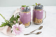 Two glasses of yoghurt with peanut granola, aronia powder and topping of chopped hazelnuts and frozen berries - JUNF01303
