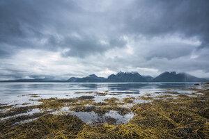 Norway, Lapland, North Cape - KKAF02290